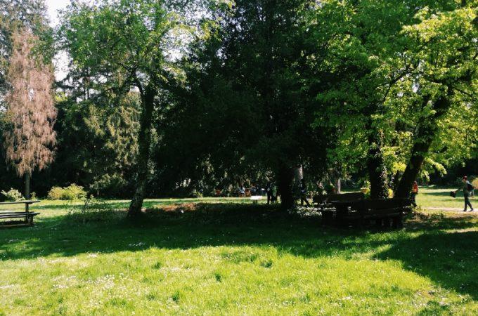 Ciekawe miejsca: Arboretum w Kórniku