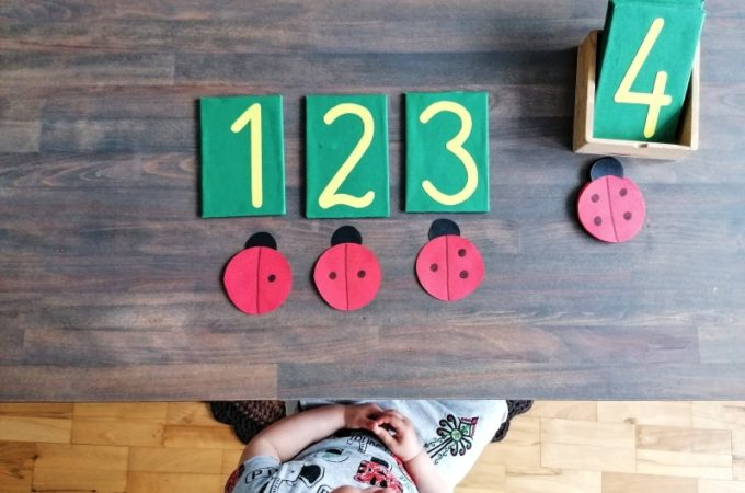 #domoweprzedszkole Matematyczne biedronki
