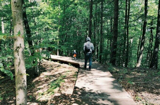 Ciekawe miejsca: Leśny Ogród Botaniczny Marszewo w Gdyni